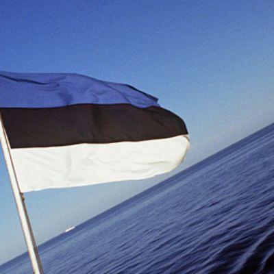 Viron lippu.