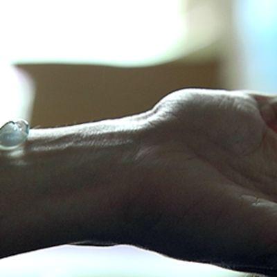 Geelinokare käsivarrella.