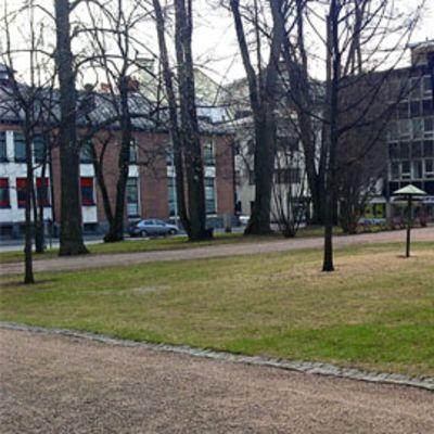 Kuvassa puisto