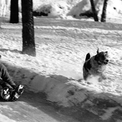 Poika laskee mäkeä koiran juostessa vierellä.
