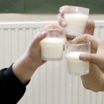 Lapset kilistelevät maitolaseilla.