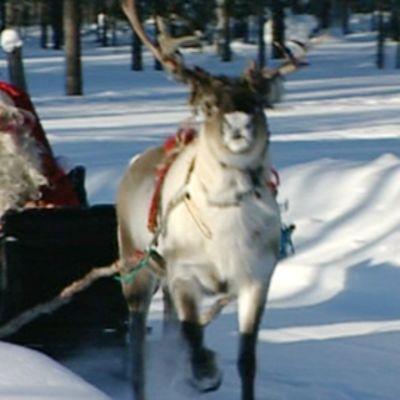 Joulupukki lähdössä matkaan Korvatunturilta.