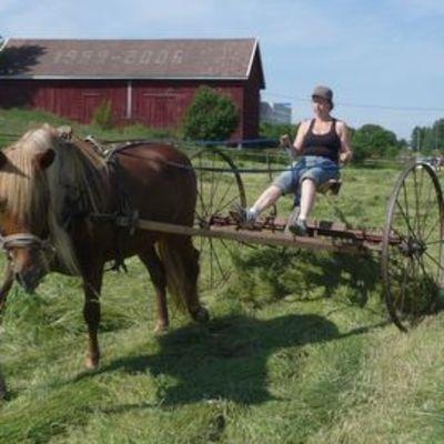 Raili Selinheimo ja Putte-hevonen