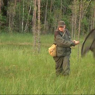 Perhostutkija Reima Leinonen haavii hyönteisiä kuhmolaisella suolla.