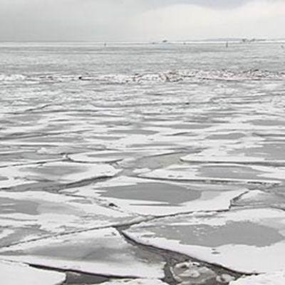 Jäätynyt meri