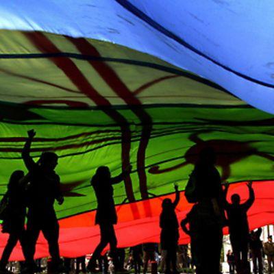 Mielenosoittajia jättimäisen siniviherpunaisen lipun varjossa osoittamassa mieltään.