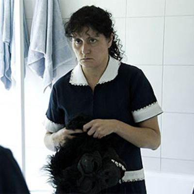 La nana (The Maid).