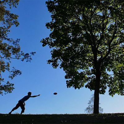 Mies harrastaa frisbeegolfia