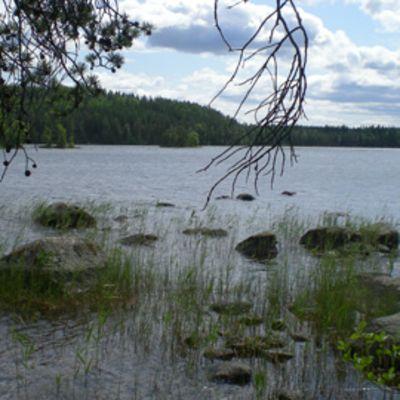 Kaunis luonto on yksi Heinolan valttikorteista. Kuva Heinolan Paistjärveltä.