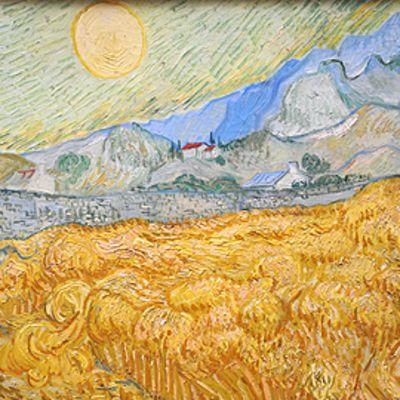 Nainen katsoo Vincent Van Goghin teosta museossa.