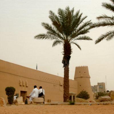 Savesta tehty linnoitus palmujen katveessa.