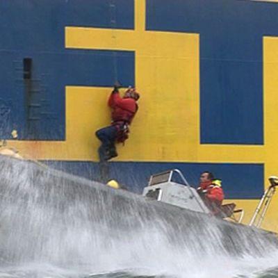 Greenpeacen aktivistit valtaavat rahtialuksen. Mies kiipeää veneestä köyden varassa aluksen kylkeä pitkin kantta kohti.