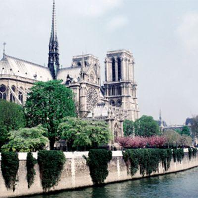 Notre-Damen katedraali.