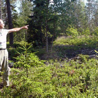 Leevi Korpela näyttää, minne Uudessakylässä myrsky iski marraskuussa 2001.