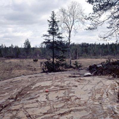Serpentiniitin paljastuma Sotkamon Alasella. Kalliolla leka antamassa mittakaavan.