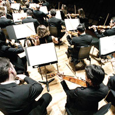 Philharmonian viulisteja takaviistosta otetussa kuvassa
