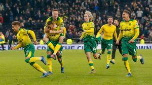 Norwich City-spelarna jublar.