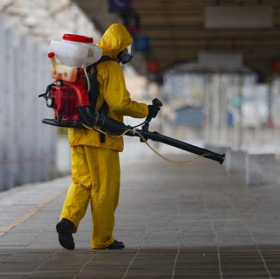 En person i gul skyddsutrustning bör på en spruta med tank och motor på ryggen.