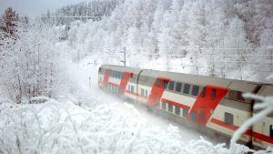 Ett röd-vitt modernt tåg i snöigt vinterlandskap.