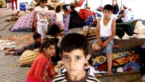 Yazidiska flyktingar