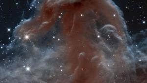 Hevosenpääsumu Orionin kaasusumussa