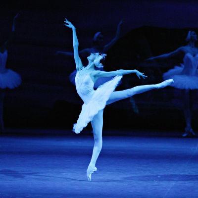 Joutsenlampi-baletti Moskovan Bolšoissa