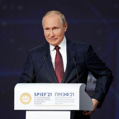 Vladimir Putin talar under det internationella ekonomiska forumet speif i S:t Petersburg. Han är klädd i kostym och ler