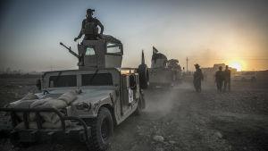 Arkivbild på kurdiska peshmerga-styrkor sydost om Mosul 14.8.2016