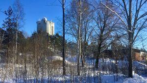Ett vattentorn syns långt borta uppe på en backe. Vinterlandskap, solsken. Buskage och byggnader syns också i förgrunden.