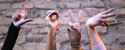 Fyra händer som formar ordet love.