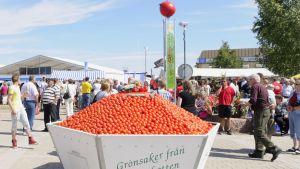 Tomatkarnevalen i Närpes