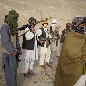 Talibantalesmannen Zabiullah Mujahid förnekar att mulla Mohammad Mansur skulle vara död