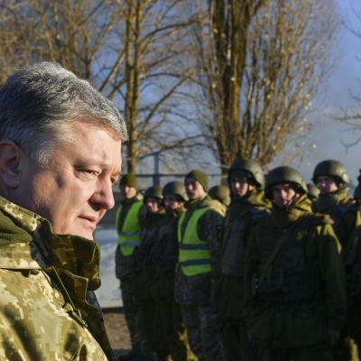 Ukrainas president Petro Porosjenko hoppas att Nato skickar krigsfartyg till Azovska sjön för att konfrontera Ryssland