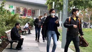 Andningsskydd på grund av röken efter skogsbränder i Kalifornien.