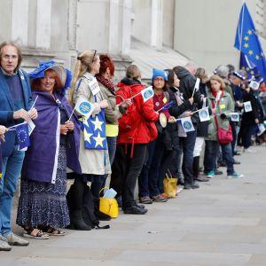 Demonstration i London som kräver att den brittiska regeringen klargör EU-medborgares ställning efter Brexit.