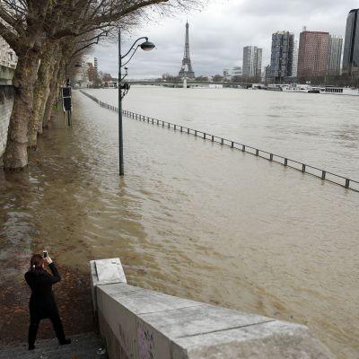 Floden Seine i Paris har svämmat över sina bräddar