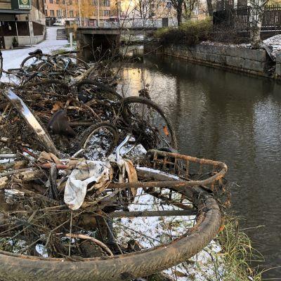 Kuvassa vedenpohjasta nostettuja polkupyöriä