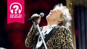 Rod Stewart sjunger lätt bakåtlutad i en mikrofon som är fast i mikrofonställningen.