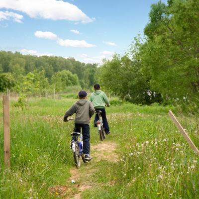 Två pojkar cyklar på en stig ute på landet.