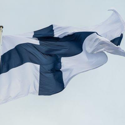 Suomen Lippu liehuu salossa