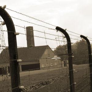 Buchenwaldin keskitysleirillä vallitsi vankien kesken tiukka hierarkia ja kuri. Keitä SS-vartijat valitsivat luottovangeiksi?