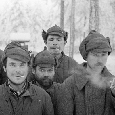Venäläisiä sotavankeja Parikkalan sotavankileirillä (1939).