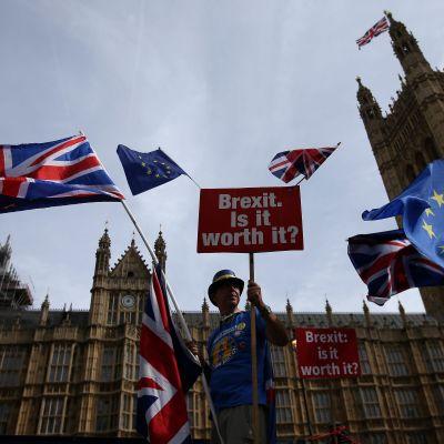 Brexit-demonstration i London