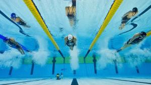 EM i simning i Berin 2014.