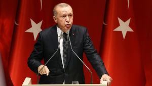 Turkiets president Recep Tayyip Erdogan står framför turkiska flaggor.