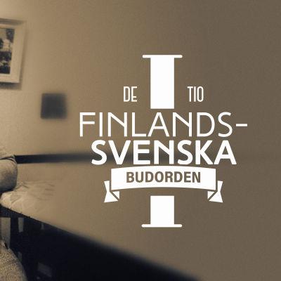 De tio finlandssvenska budorden artikel 1