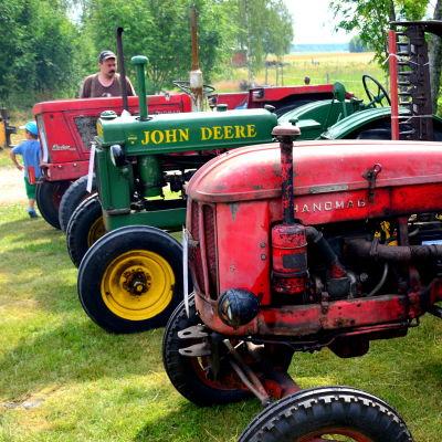 Gamla traktorer på rad