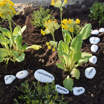 Stenar med ord påskrivna, ligger utradadade mellan blommor i en rabatt.