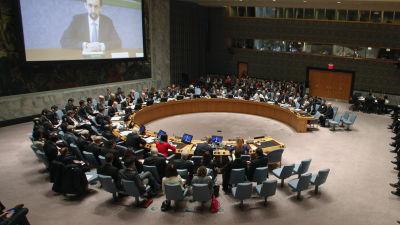 FN:s säkerhetsråd