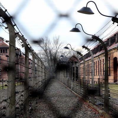 Före detta förintelselägret i Auschwitz.